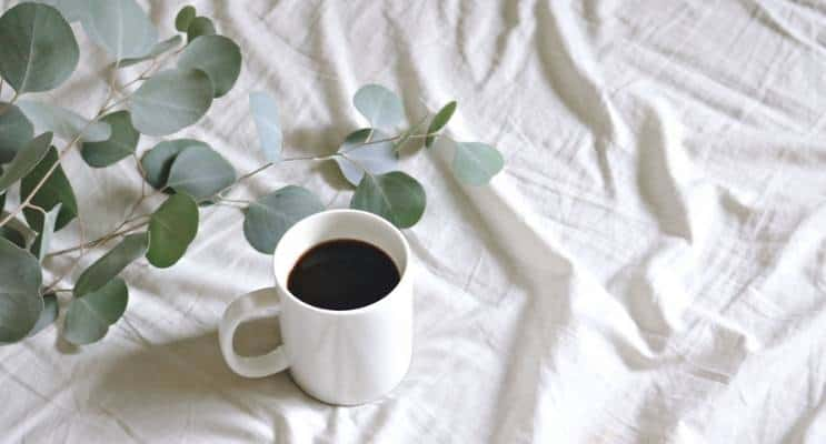 Coffee Bed